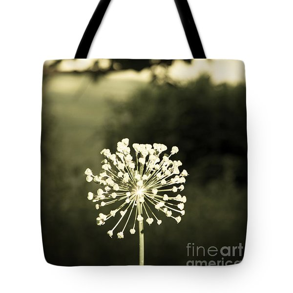Tote Bag featuring the photograph Make A Wish by Chris Scroggins