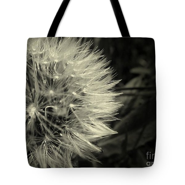 Tote Bag featuring the photograph Make A Wish by Clare Bevan
