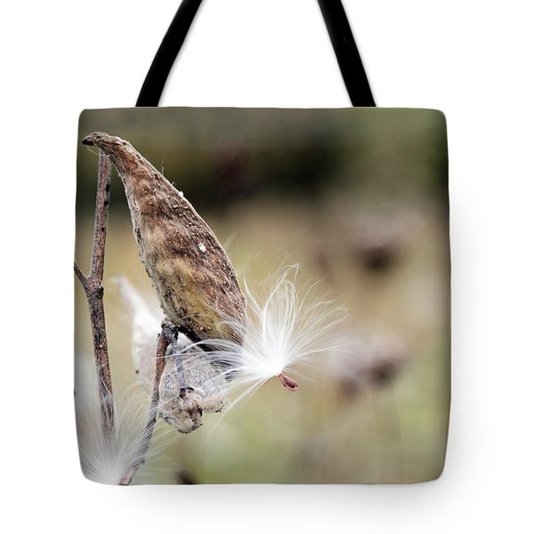 Tote Bag featuring the photograph Make A Wish - Milkweed In Autumn by Brooke T Ryan
