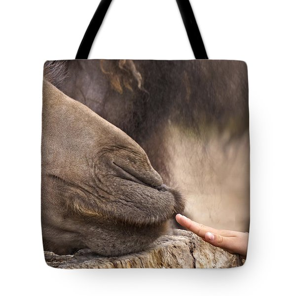 Tote Bag featuring the photograph Making Friends by Inge Riis McDonald