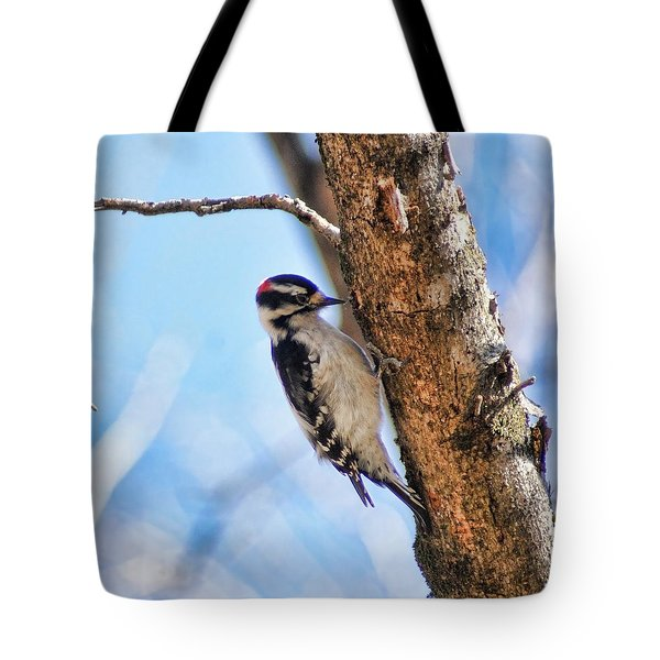 Making Sawdust Tote Bag by Rick Friedle