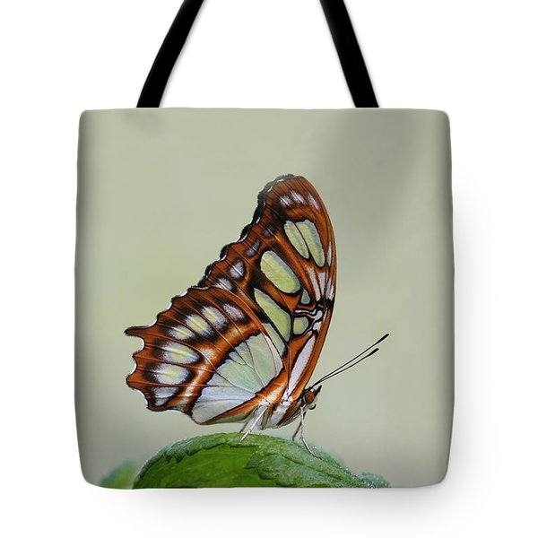 Malachite Butterfly #5 Tote Bag