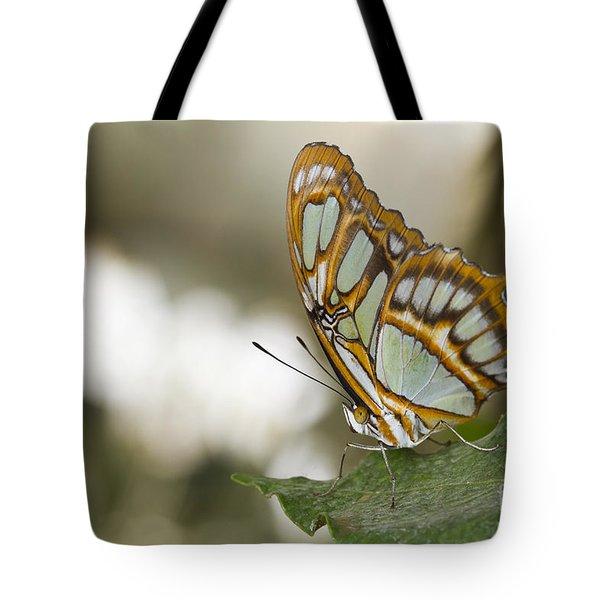 Malachite Butterfly Tote Bag by Bryan Keil