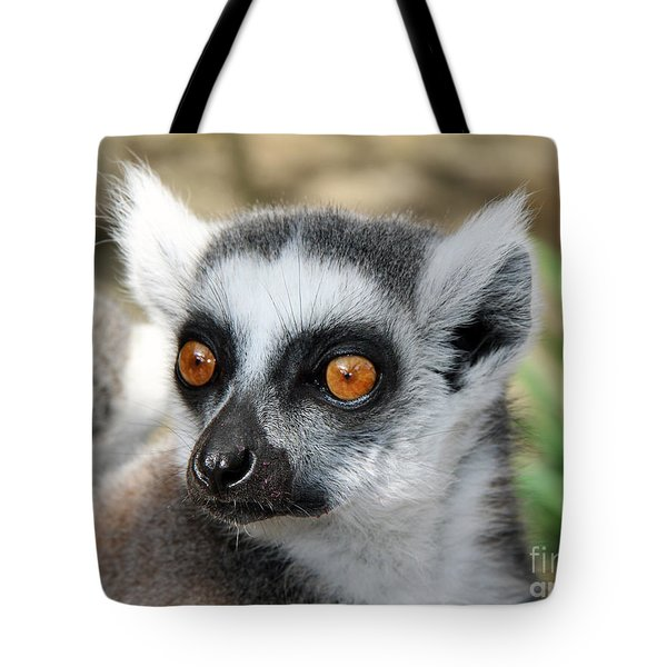 Tote Bag featuring the photograph Malagasy Lemur by Sergey Lukashin