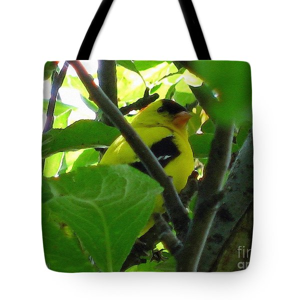Male American Goldfinch Tote Bag by J McCombie