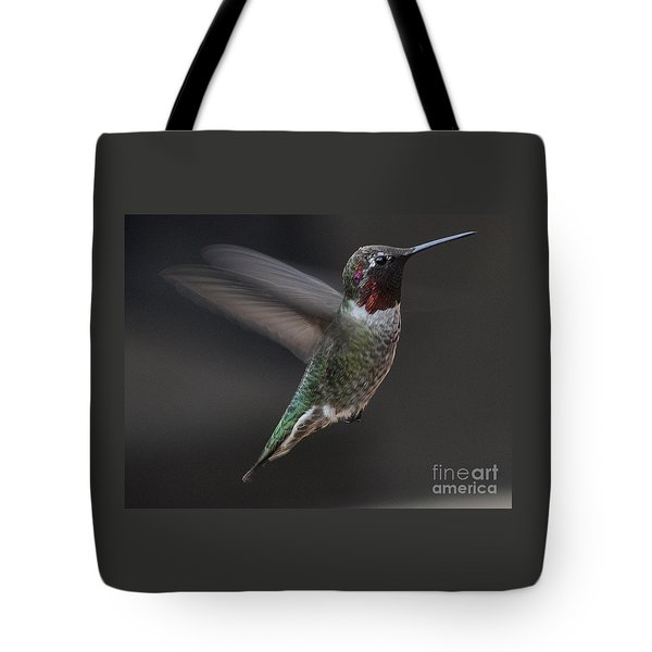 Tote Bag featuring the photograph Male Anna Hummingbird In Flight by Jay Milo