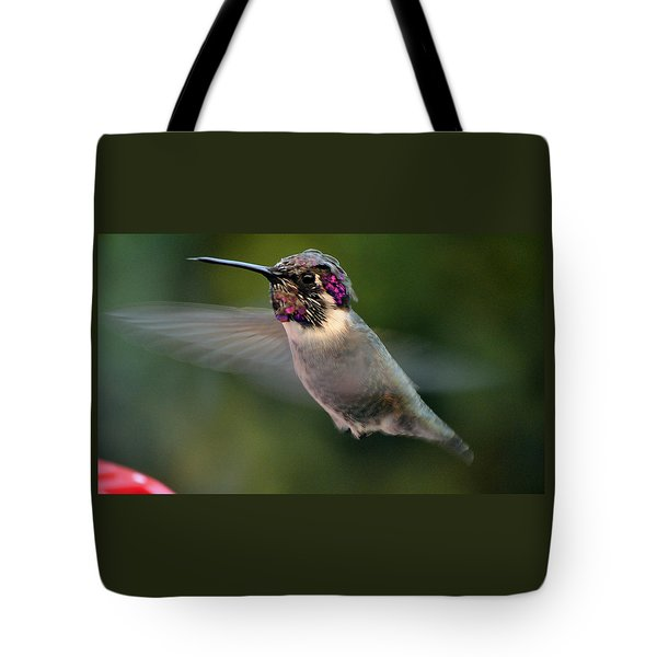 Tote Bag featuring the photograph Male Anna's In Flight by Jay Milo