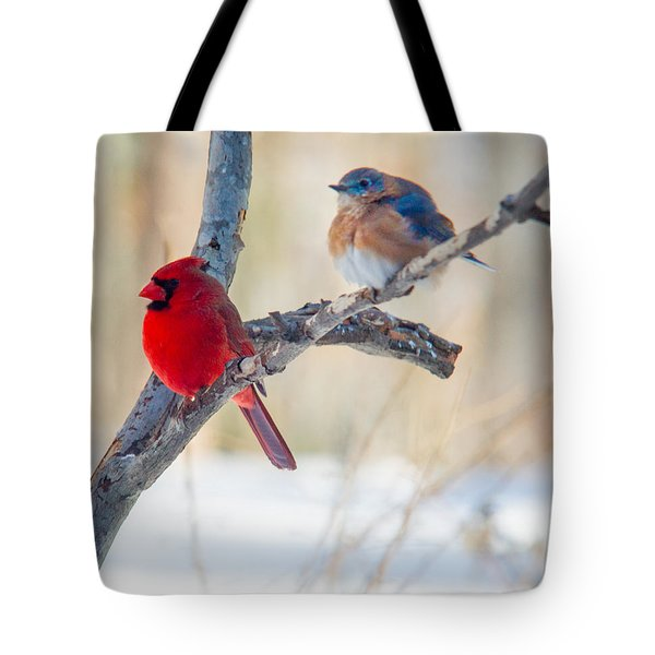 Male Bluebird And Cardinal On Branch Tote Bag