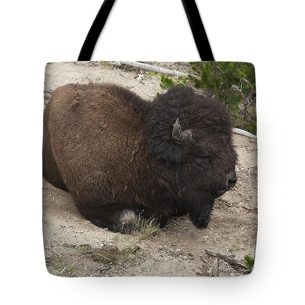 Tote Bag featuring the photograph Male Buffalo At Hot Springs by Belinda Greb