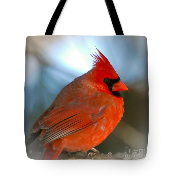 Tote Bag featuring the photograph Male Cardinal  by Kerri Farley
