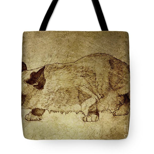 Male Cat Hunts At Night Tote Bag