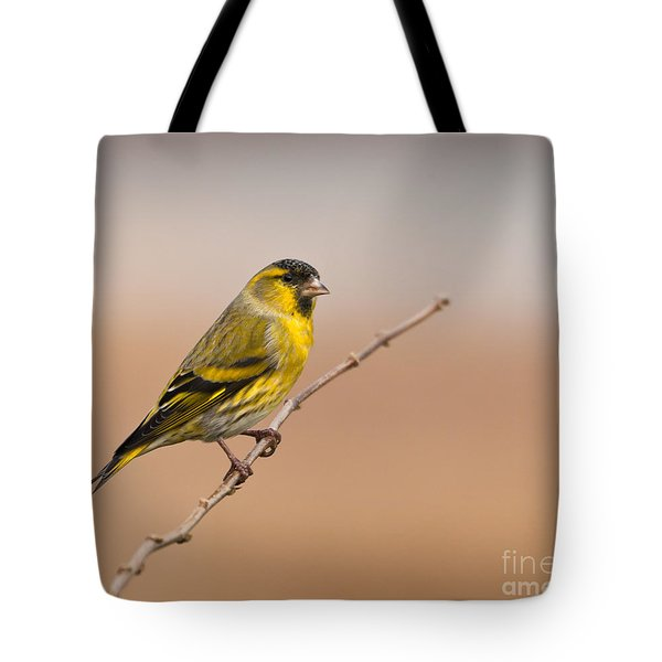 Male Eurasian Siskin Tote Bag