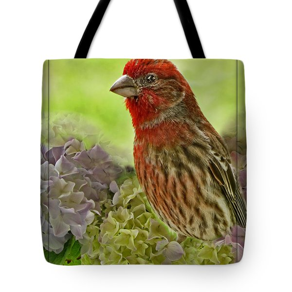 Tote Bag featuring the photograph Male Finch In Hydrangesa by Debbie Portwood