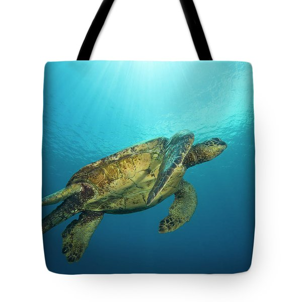 Male Green Sea Turtles  Chelonia Mydas Tote Bag