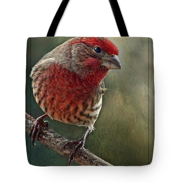Male Housefinch With Green Texture And Decorations Tote Bag by Debbie Portwood