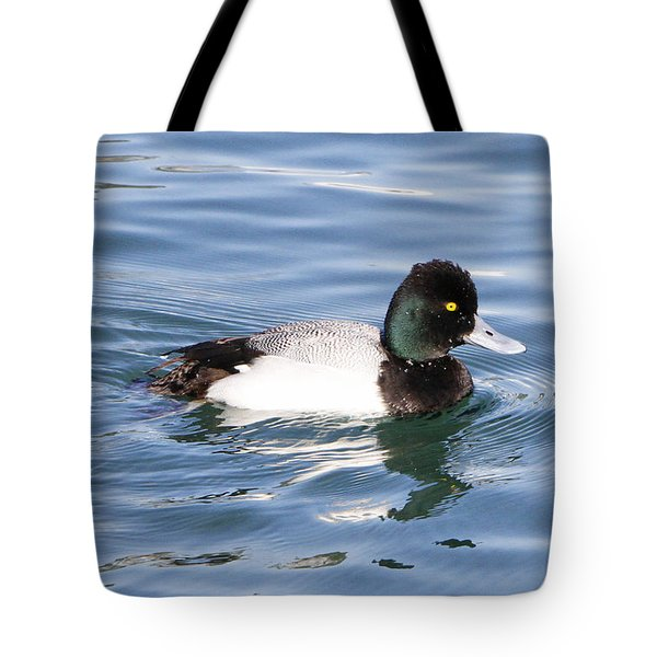Male Lesser Scaup Tote Bag by Shoal Hollingsworth