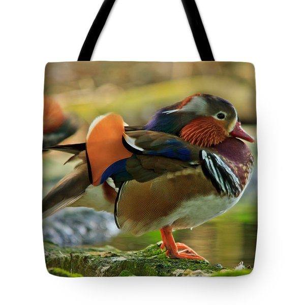Tote Bag featuring the photograph Male Mandarin Duck On A Rock by Eti Reid