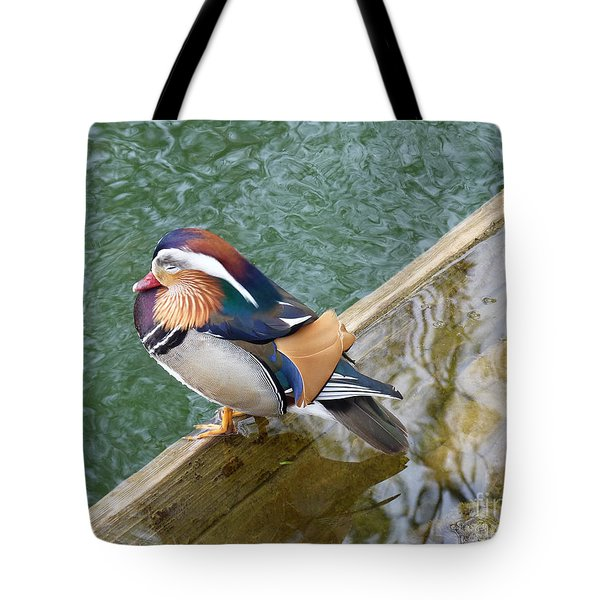 Male Mandarin Duck Sleeping At Pond Edge Tote Bag