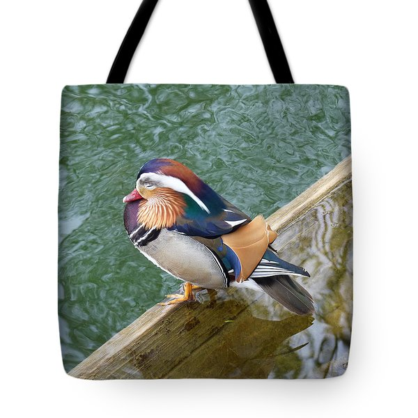 Tote Bag featuring the photograph Male Mandarin Duck Sleeping At Pond Edge by Menega Sabidussi