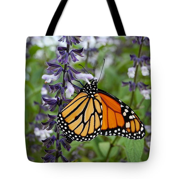 Tote Bag featuring the photograph Male Monarch Butterfly  by Eva Kaufman