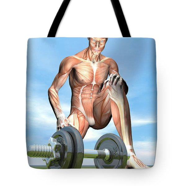 Male Musculature Looking At A Dumbbell Tote Bag by Elena Duvernay
