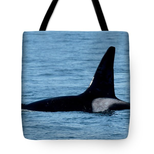 Tote Bag featuring the photograph Male Orca Killer Whale In Monterey Bay 2013 by California Views Mr Pat Hathaway Archives