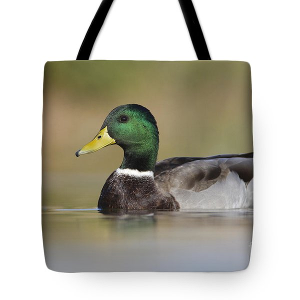 Tote Bag featuring the photograph Mallard by Bryan Keil