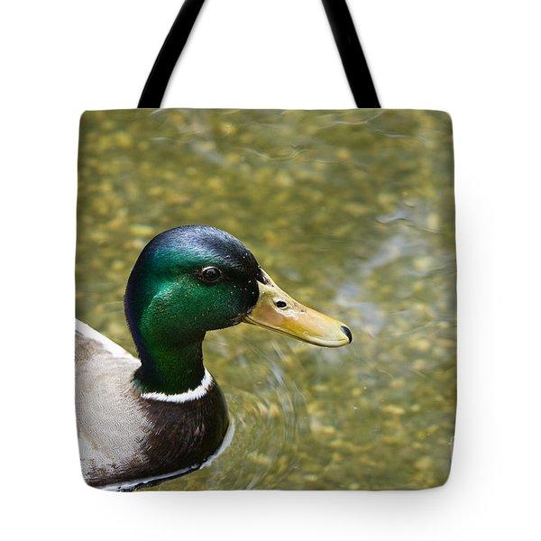 Tote Bag featuring the photograph Mallard Duck Closeup by David Millenheft