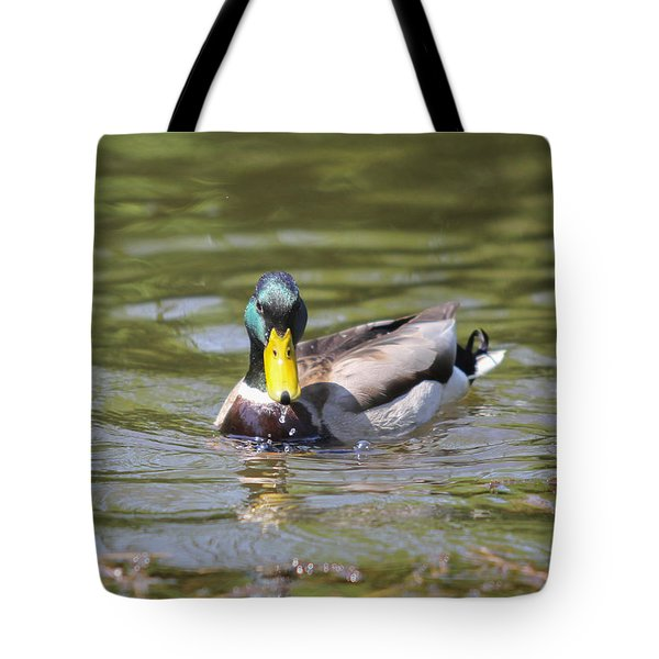 Tote Bag featuring the photograph Mallard Green Headed Duck Anas Platyrhynchos - Male by Jivko Nakev