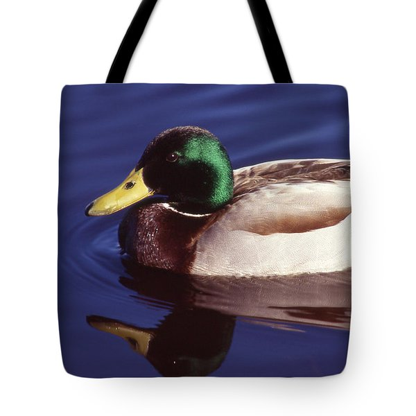 Mallard In The Mirror Tote Bag