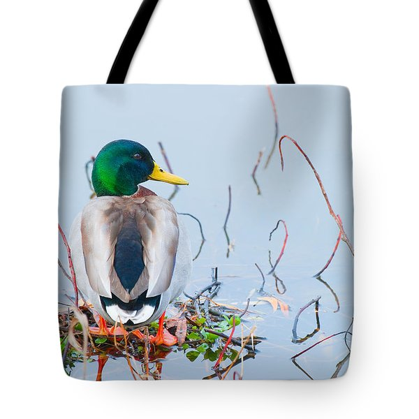 Tote Bag featuring the photograph Mallard by Ram Vasudev