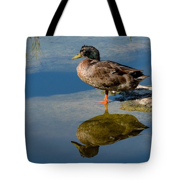 Mallard Reflection Tote Bag
