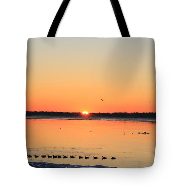 Mallards At Sunrise Tote Bag by David Jackson