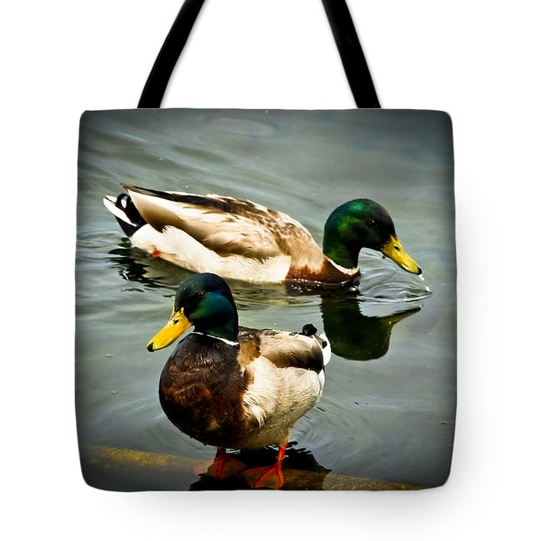 Mallards On Mendota Tote Bag