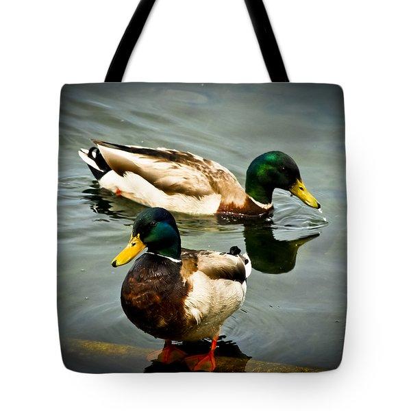 Mallards On Mendota Tote Bag by Christi Kraft