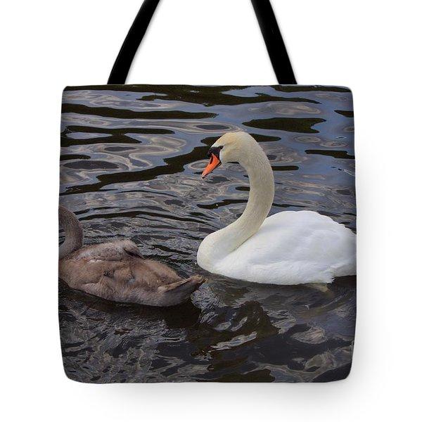 Mama And Baby Swan Tote Bag