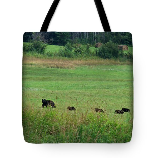 Mama Bear And 4 Cubs Tote Bag