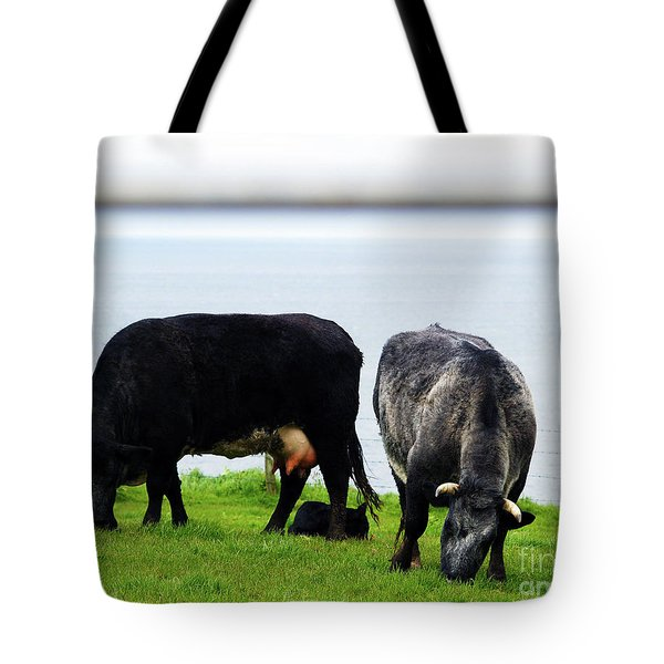 Mama Daddy And Baby Tote Bag by Patricia Griffin Brett