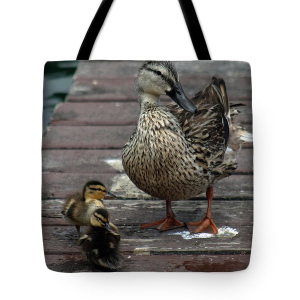 Mama Duck And Ducklings Tote Bag