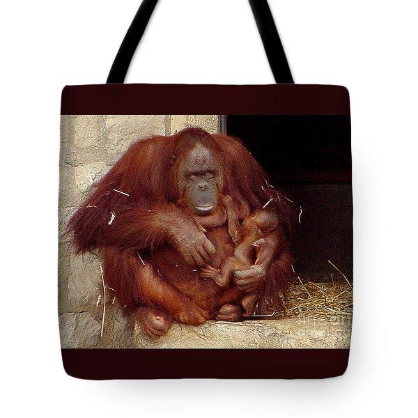 Mama N Baby Orangutan - 54 Tote Bag by Gary Gingrich Galleries