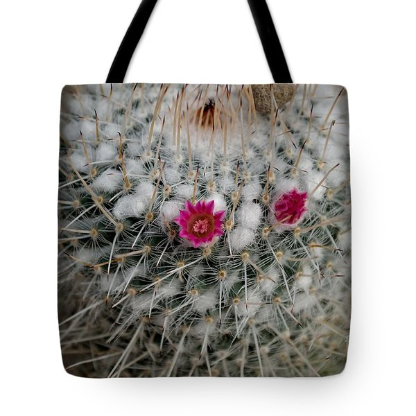 Tote Bag featuring the photograph Mammillaria Geminispina by Scott Lyons