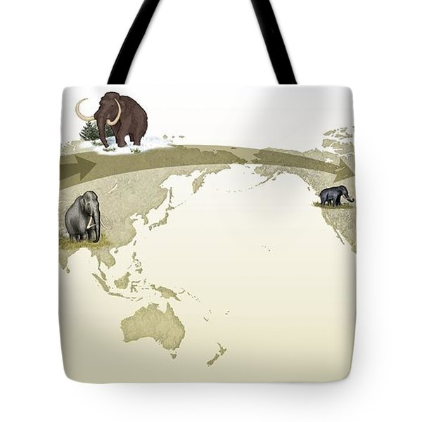 Mammoth Evolutionary Migration Tote Bag by Spl