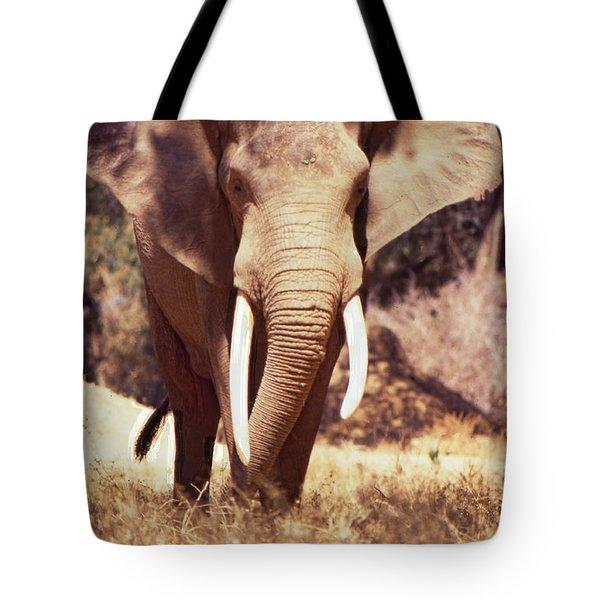 Mana Pools Elephant Tote Bag