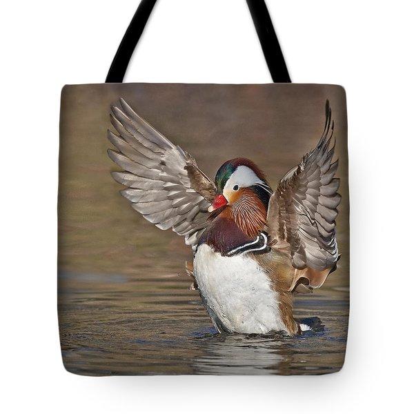 Mandarin Duck Flapping Away Tote Bag by Susan Candelario