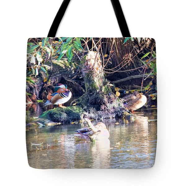 Mandarin Duck Tote Bag by Leif Sohlman