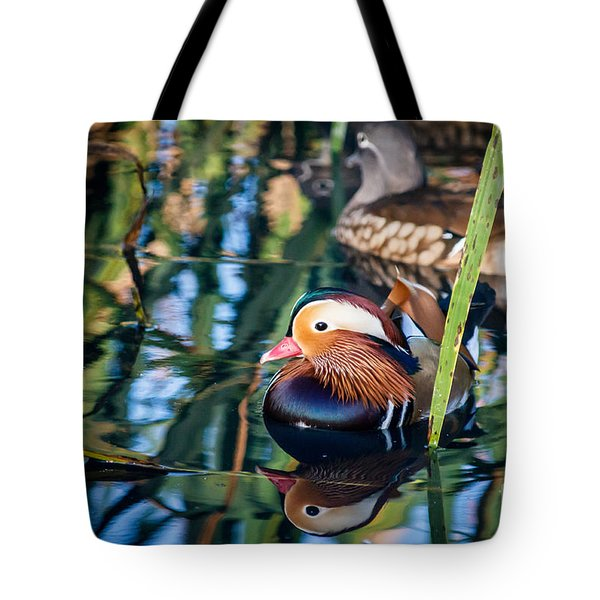 Mandarin Duck Reflections Tote Bag by Peta Thames