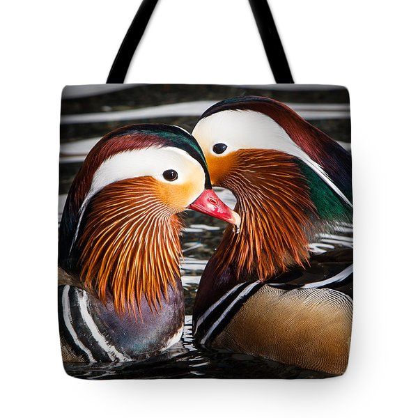 Mandarin Lovers Tote Bag