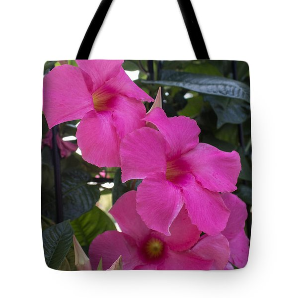 Mandevilla Beauty Tote Bag