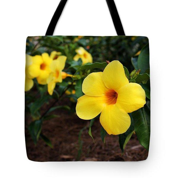 Mandevilla Tote Bag by Judy Vincent