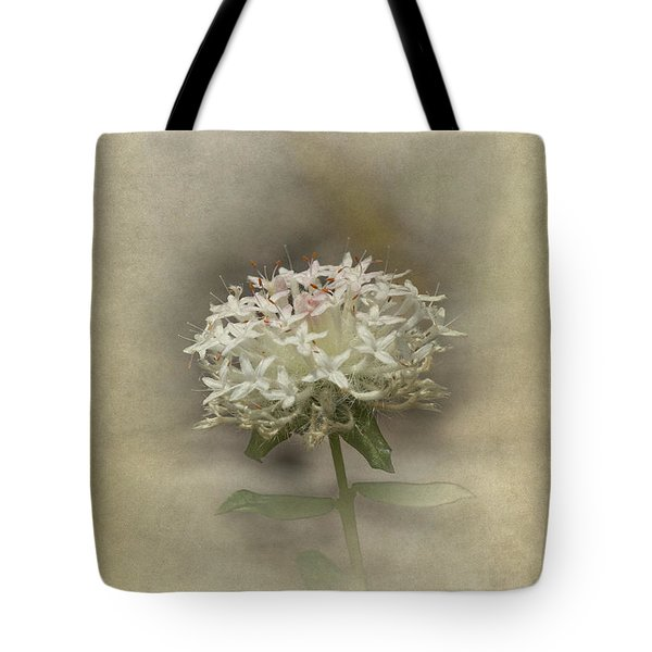 Tote Bag featuring the photograph Mandy by Elaine Teague
